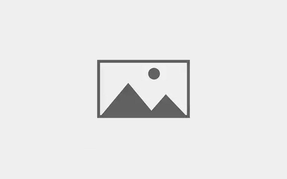 CodeRaiders- Programming Club (January 29, 2017)